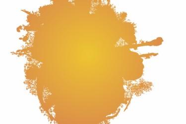 Orange splat image