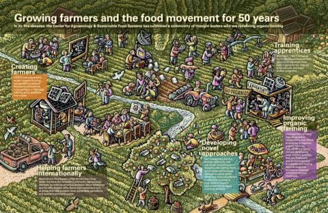 Infographic portraying farmers and the food movement for 50 years