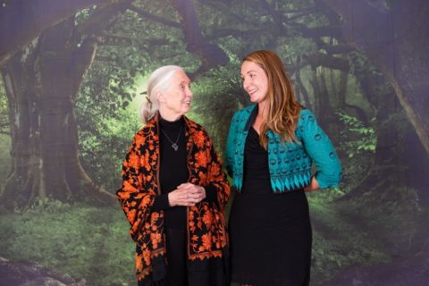 Legendary chimpanzee expert and wildlife advocate Jane Goodall, left, shares a laugh with UC Santa Cruz anthropologist Vicky Oelze (photo by Drew Altizer Photography)